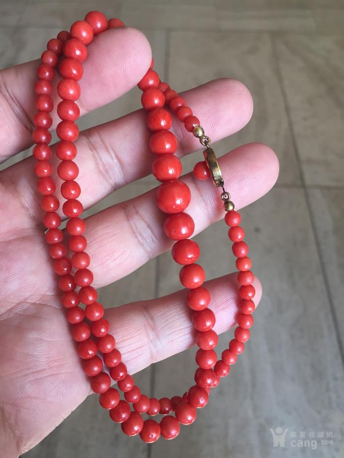 红珊瑚项链图7